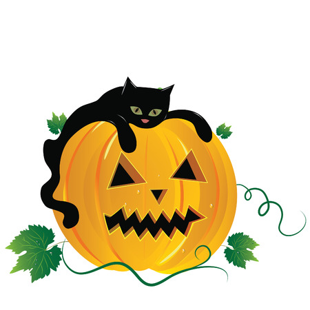 Halloween   illustration scene, with black cat and pumpkin. Vector
