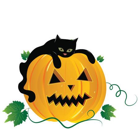 Halloween   illustration scene, with black cat and pumpkin. Stock Vector - 7686073
