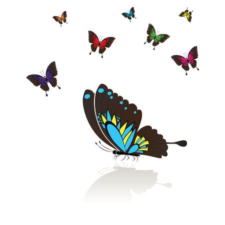 reflejo en espejo: Recopilar de muchas mariposas de colores con una reflexi�n de espejo, ilustraci�n.