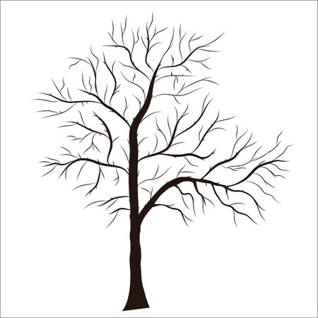 tree texture: Tree silhouette - detailed . Element for design.