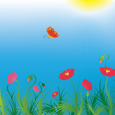 Background with poppies and red butterfly. Vector illustration. Vector