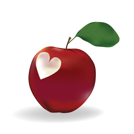 apple red: Apple with a heart isolated on white. Image contains gradient mesh..