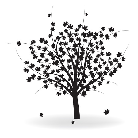 Silhouette of beautiful autumn tree for your design.