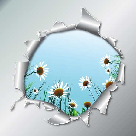 shred: Floral background camomile flower in metallic hole. Vector illustration. EPS10