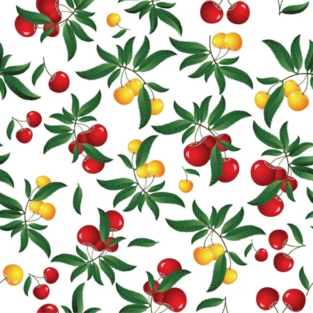 orchard fruit: Seamless red cherry background. Vector illustration. Element for design.