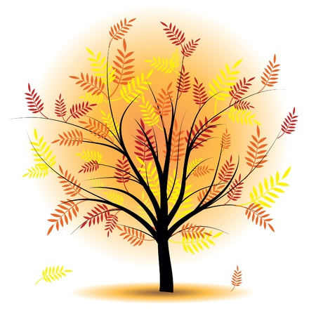 Beautiful autumn tree. Design element. Fall illustration. Vector