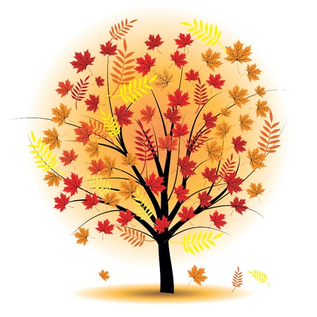 fall tree: Beautiful autumn tree. Design element. Fall illustration.
