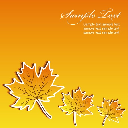 Abstract maple autumn background with space for text  Stock Vector - 10366768