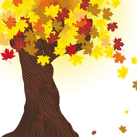 Beautiful autumn tree. Maple background. Design element. Fall illustration. Vector