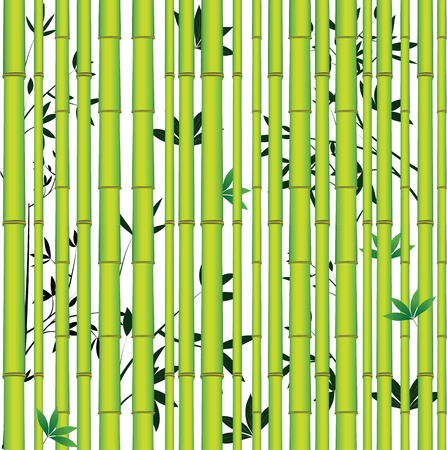 Bamboo seamless asian tropic forest. Wood vector leaf background. Vector
