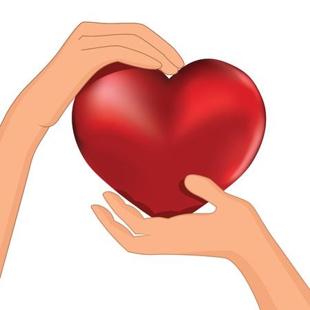cautious: Persona que sostenga el coraz�n rojo en la ilustraci�n de Protecci�n de la mano de vectores, la cardiolog�a, la salud Vectores