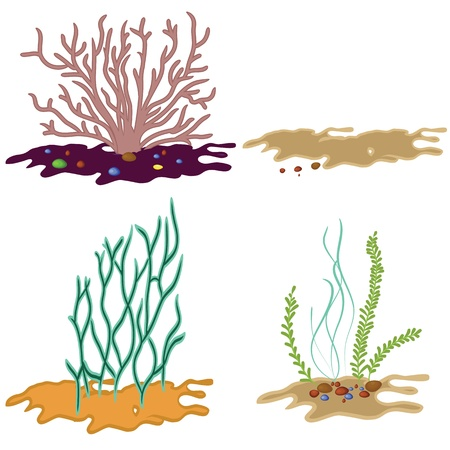 Algae seeweed set on underwater sand  of isolated vector sea coral silhouettes with stone Vectores