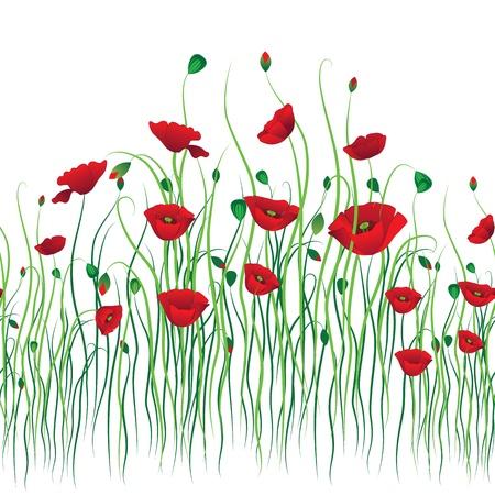 Poppy seamless background. Flower vector. Art border pattern. Floral vintage design. Pretty cute wallpaper. Feminine filigree Vectores