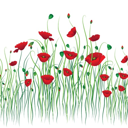 Poppy seamless background. Flower vector. Art border pattern. Floral vintage design. Pretty cute wallpaper. Feminine filigree Illustration