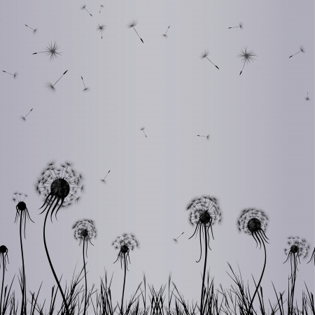 breeze: Dandelion wind in grass, flower vector. Abstract seamless vintage.Floral illustration. Stock Photo