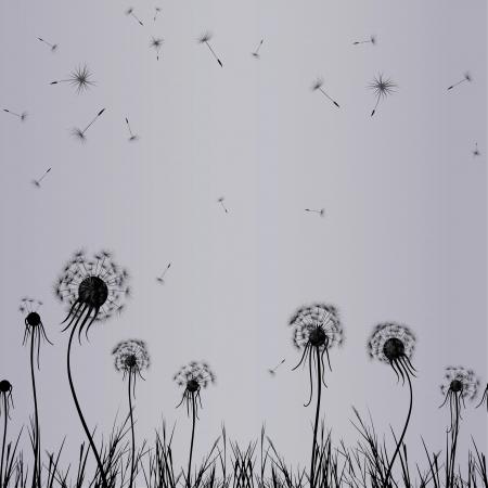 Dandelion wind in grass, flower vector  Abstract seamless vintage Floral illustration  Illustration