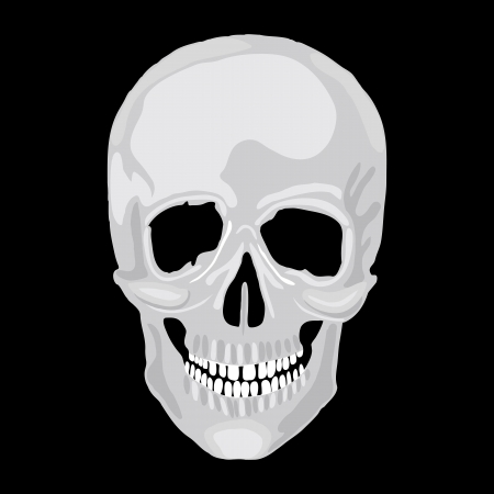 sapience: Human skull model. object scull illustration. People bone design  isolated on black background. Halloween symbol.