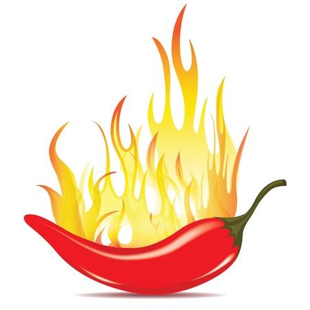 불 에너지에 핫 칠리 고추. 벡터 아이콘 흰색 배경에 고립입니다. 멕시코 문화의 빨간 고추 기호를 레코딩합니다.