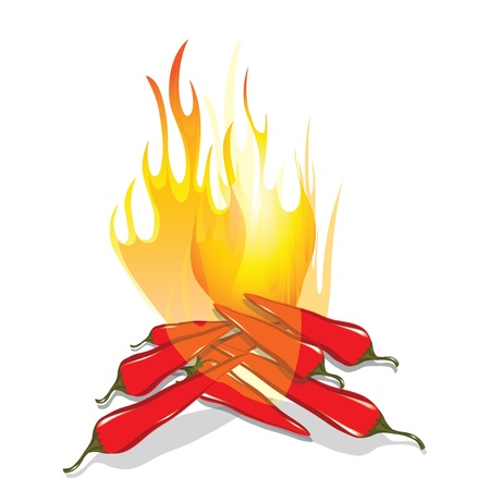 Hot chilli pepper in energy fire  Vector icon isolated on white background  Burning red chili symbol of mexican culture  Stock Vector - 18075309