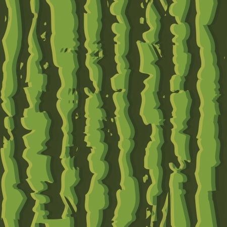 Green watermelon seamless background pattern realistic striped.