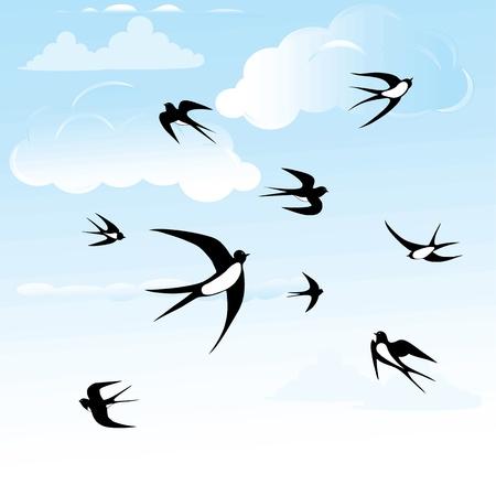Bird swallow in blue sky seamless horizontal illustration poses