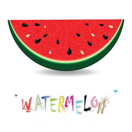 Watermelon fresh slices background  Red sweet juice pattern illustration  Vector