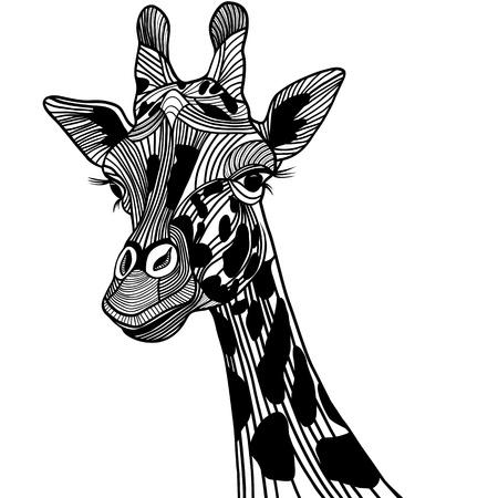 T-셔츠 기린 머리 벡터 동물 그림. 스케치 문신 디자인.