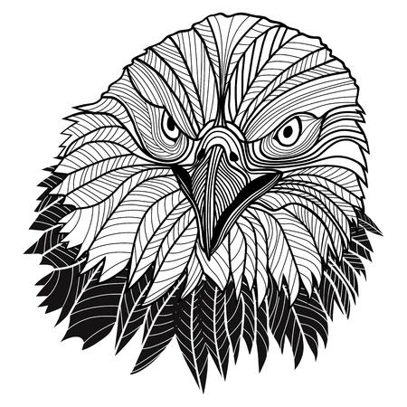 halcón: Bird cabeza calva águila como símbolo de EE.UU. para la mascota o el diseño de emblema, logotipo ilustración vectorial para el diseño del tatuaje del bosquejo t-shirt
