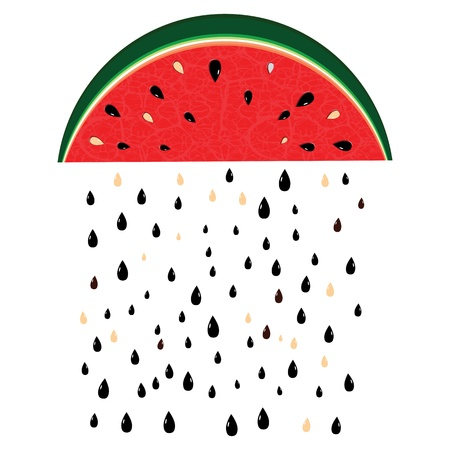 melon fruit: Watermelon rain fresh slices background  Red sweet juice pattern vector illustration