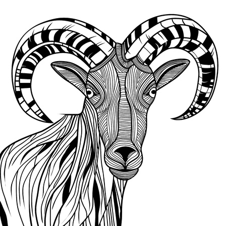 Ram Head or mountain goat line art. Sheep vector animal illustration for t-shirt. Sketch tattoo design. Vector