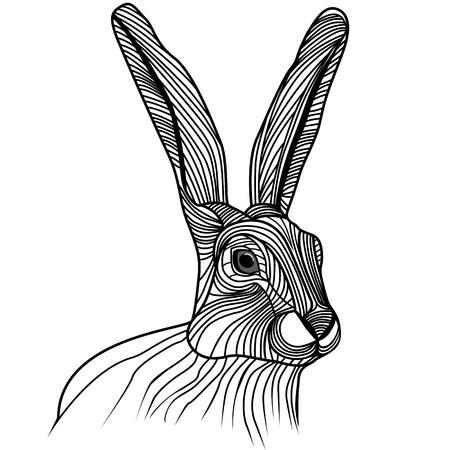 liebre: Conejo o liebre ejemplo animal cabeza para el diseño del tatuaje del bosquejo t-shirt