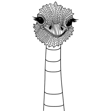 eye tattoo: Ostrich bird head as symbol for mascot or emblem design, illustration for t-shirt  Sketch tattoo design