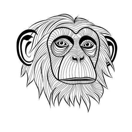 simia troglodytes: Monkey chimpanzee ape head animal, simia troglodytes, symbol for mascot or emblem design, logo illustration for t-shirt. Sketch tattoo design