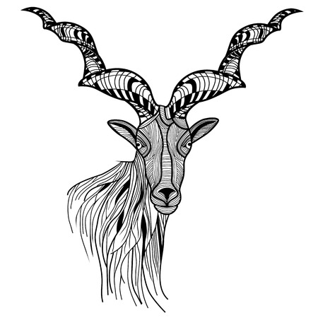 Ram Head or mountain goat line art  Sheep vector animal illustration for t-shirt  Sketch tattoo design  Vector