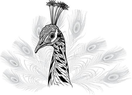 エンブレムやマスコットの設計のための記号として孔雀鳥頭、クジャクの羽のベクトル イラスト t シャツ スケッチのための入れ墨の設計