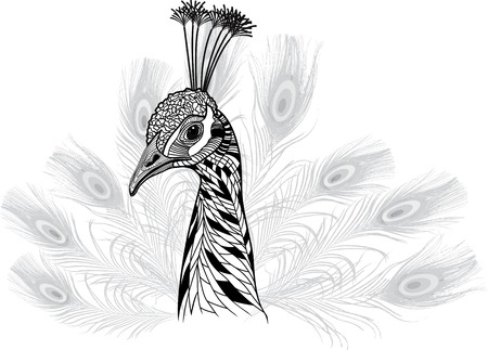 Peacock bird head as symbol for mascot or emblem design, peafowl feathers vector illustration for t-shirt  Sketch tattoo design