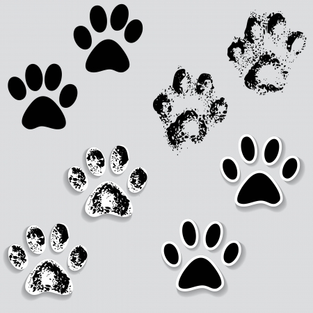 sole: Animal cat paw track feet print icons with shadow  Foot grunge banner vector illustration traces isolated on white  Illustration