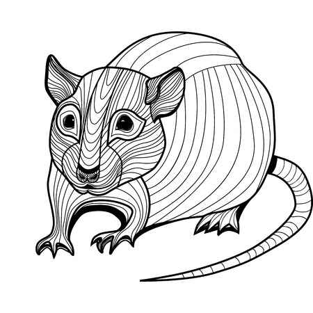 chinese astrology: Rat or mouse head vector animal illustration for t-shirt  Sketch tattoo design