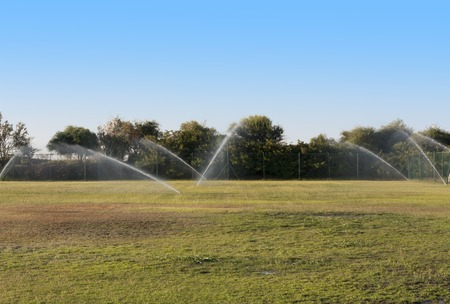 turf flowers: Pouring water of green lawn.design.landscape.Wet grass photo Stock Photo