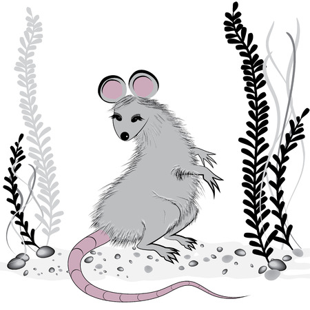 dormouse: Rat, mouse as symbol for year 2020 by Chinese traditional horoscope with grass