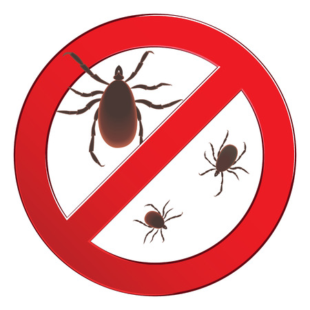 mite: Mite spider. Mite red. Mite allergy. Epidemic. Mite parasites. illustration symbol parasite warning sign. Illustration