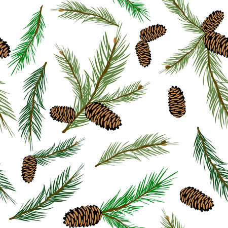 spruce: illustration seamless pattern with pinecone branch . Pine cone wood nature