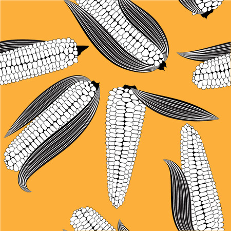 cob: Corn seamless food vector background isolated cob plant.