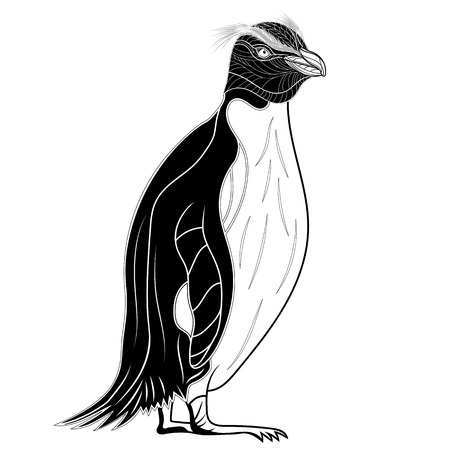 happy black people: Penguin emperor bird head as symbol for mascot or emblem design, vector illustration for t-shirt. Sketch tattoo design.