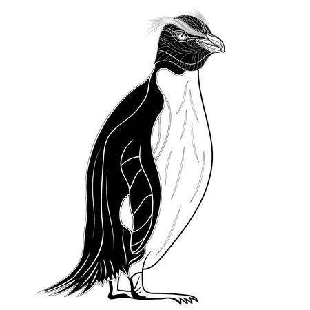 Penguin emperor bird head as symbol for mascot or emblem design, vector illustration for t-shirt. Sketch tattoo design.