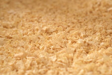 Close up texture of pine wood shavings, used as pet bedding and litter