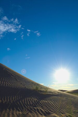 Sun shining over a sand dune in the desert of Lavalle, province of Mendoza, Argentina