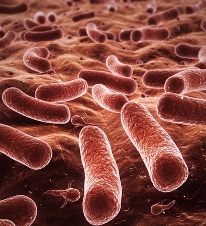 bacterias de dibujo 3d de alta calidad