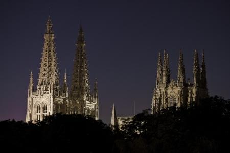 castles needle: Burgos Cathedral Stock Photo