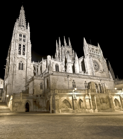 castles needle: Burgos Cathedral is a gothic cathedral located in north of Spain